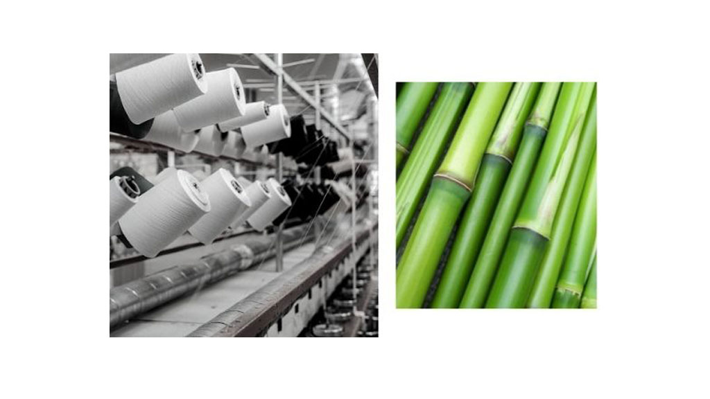 What is Bamboo Cotton and What Are the Benefits